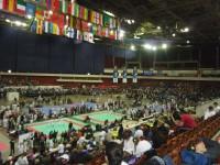 Олимпиада боевых искусств